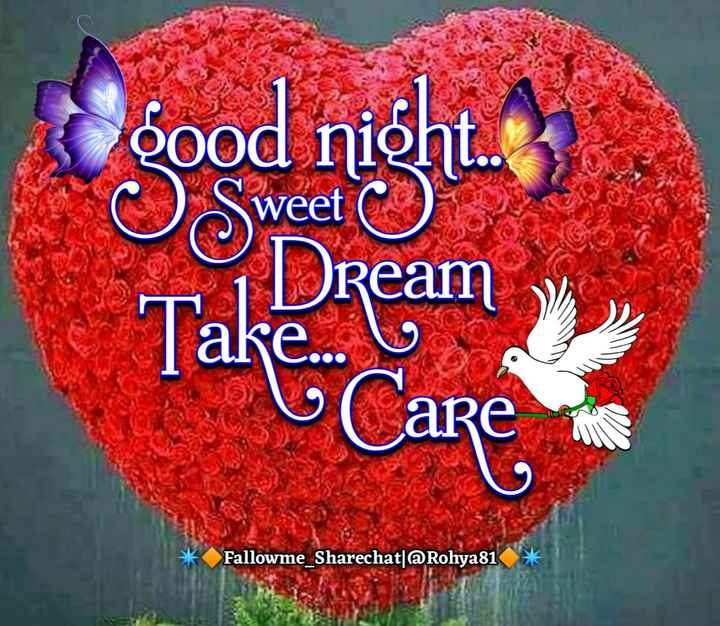 😴शुभ रात्री😴 - Good night . OS Dream weet Take . . . Care Fallowme _ Sharechat @ Rohya81 * - ShareChat