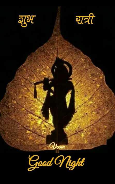 😴शुभ रात्री - शुभ रात्री Veena Good Night - ShareChat