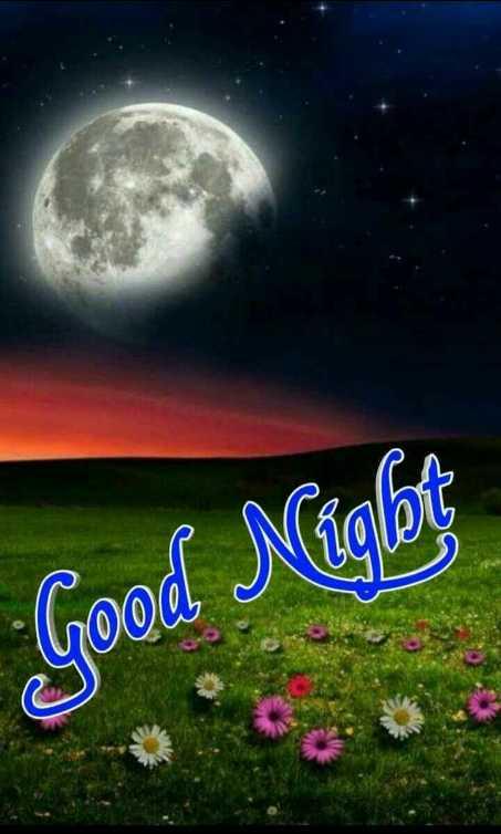 😴शुभ रात्री - Good Niglot - ShareChat