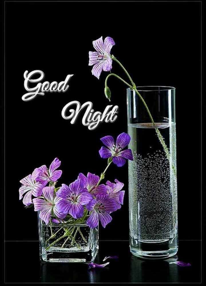 😴शुभ रात्री - అతడ - ShareChat