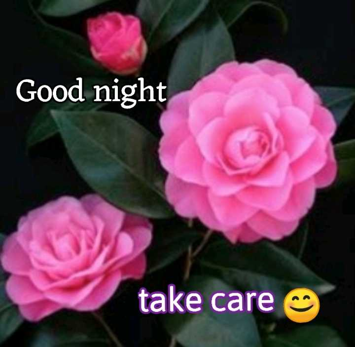 😴शुभ रात्री - Good night take care - ShareChat