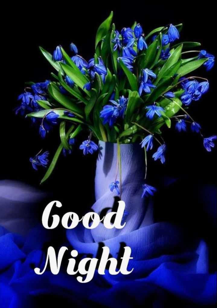 😴शुभ रात्री - Good Night 1 - ShareChat