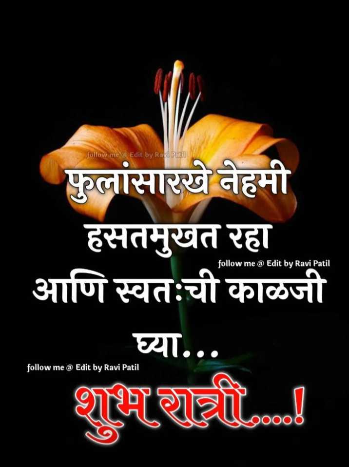😴शुभ रात्री😴 - follow me @ Edit by Ravi Patil फुलांसारखे नेहमी हसतमुखत रहा आणि स्वतःची काळजी घ्या . . . follow me @ Edit by Ravi Patil follow me @ Edit by Ravi Patil शुभ रात्री 00000 - ShareChat