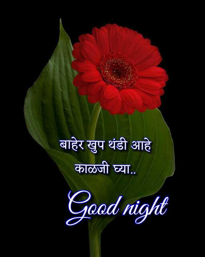 😴शुभ रात्री - बाहेर खुप थंडी आहे काळजी घ्या . . Good night - ShareChat