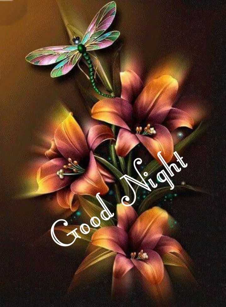 😴शुभ रात्री - Good Night - ShareChat