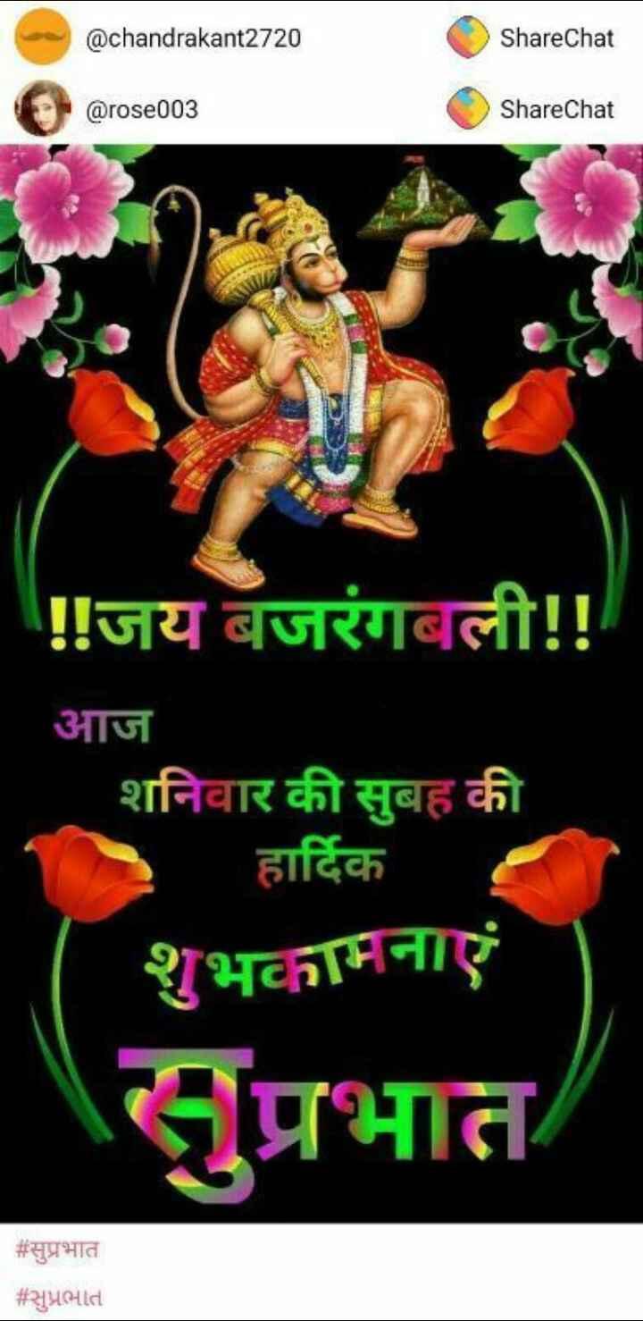 🌷शुभ शनिवार - @ chandrakant2720 ShareChat @ rose003 ShareChat ! ! जय बजरंगबली ! ! आज शनिवार की सुबह की हार्दिक शुभकामनाएं सुप्रभात # सुप्रभात # सुप्रभात - ShareChat