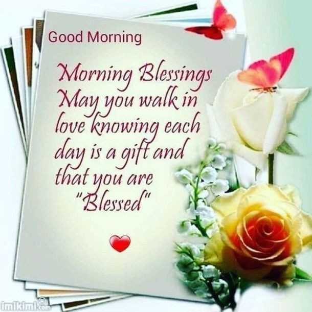 🌷शुभ शनिवार 🌷 - Good Morning Morning Blessings May you walk in love knowing each day is a gift and that you are Blessed kimiko - ShareChat
