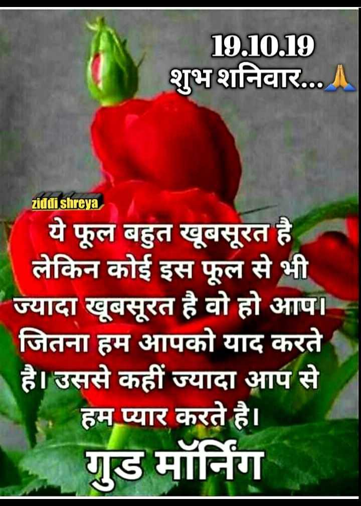 🌷शुभ शनिवार - 19 . 10 . 19 शुभ शनिवार . . . ॥ ziddi shreya ये फूल बहुत खूबसूरत है लेकिन कोई इस फूल से भी ज्यादा खूबसूरत है वो हो आप । जितना हम आपको याद करते है । उससे कहीं ज्यादा आप से हम प्यार करते है । गुड मॉर्निंग - ShareChat
