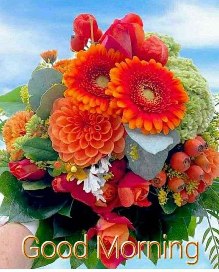 🌷शुभ शनिवार🌷 - Good Morning - ShareChat