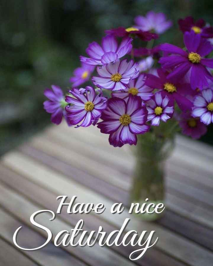 🌷शुभ शनिवार - Have a nice Saturday - ShareChat