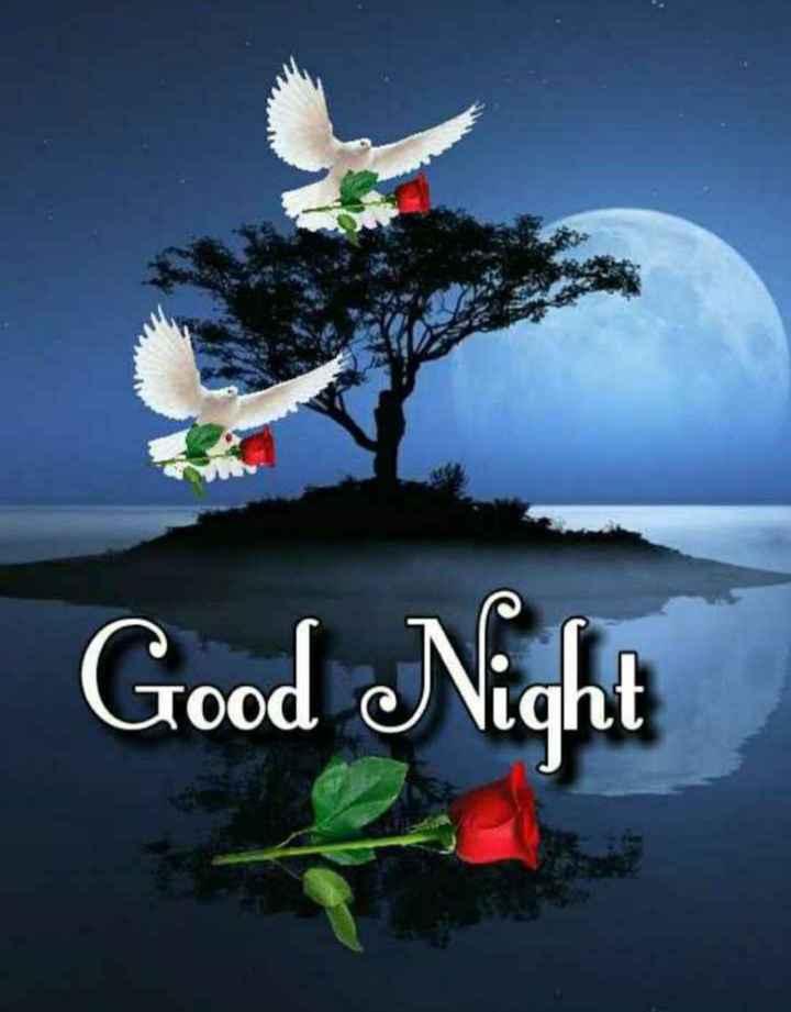 🌷शुभ शनिवार🌷 - Good Night - ShareChat