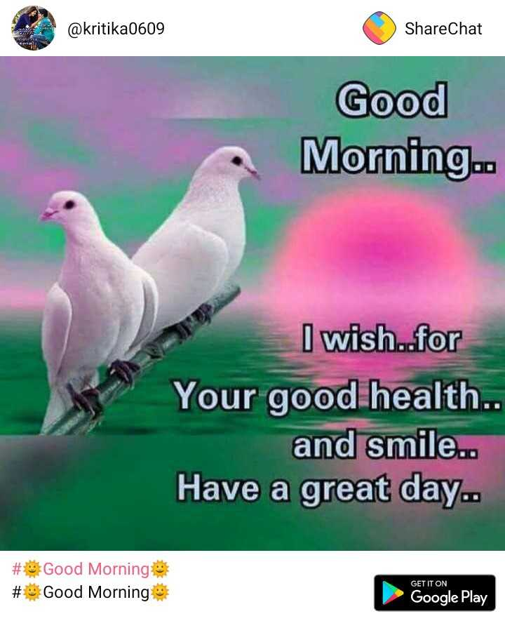 🌷शुभ शुक्रवार - @ kritika0609 ShareChat Good Morning . . I wish . . for Your good health . . and smile . . Have a great day . . # Good Morning # Good Morning GET IT ON Google Play - ShareChat