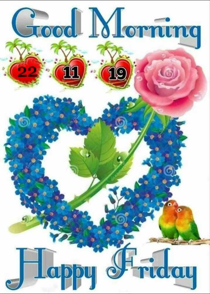 🌷शुभ शुक्रवार - Good Morning C Happy Friday - ShareChat
