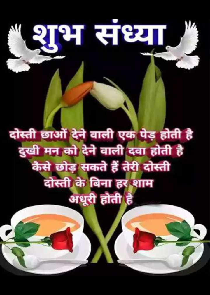 🌜 शुभ संध्या🙏 - शुभ संध्या दोस्ती छाओं देने वाली एक पेड़ होती है । दुखी मन को देने वाली दवा होती है । कैसे छोड़ सकते हैं तेरी दोस्ती दोस्ती के बिना हर शाम अधूरी होती है - ShareChat