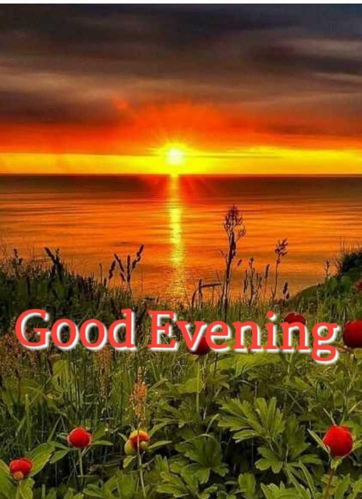 🌜शुभ संध्या - Good Evening - ShareChat