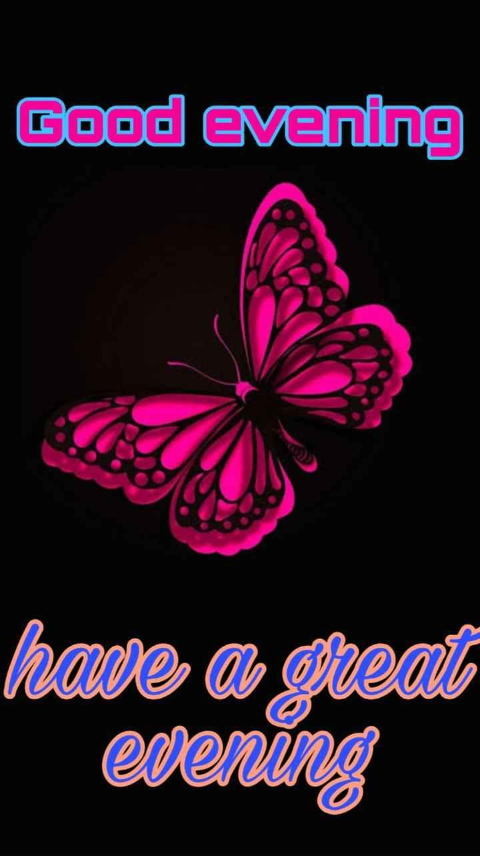 🌜 शुभ संध्या🙏 - Good evening hare a great evening - ShareChat