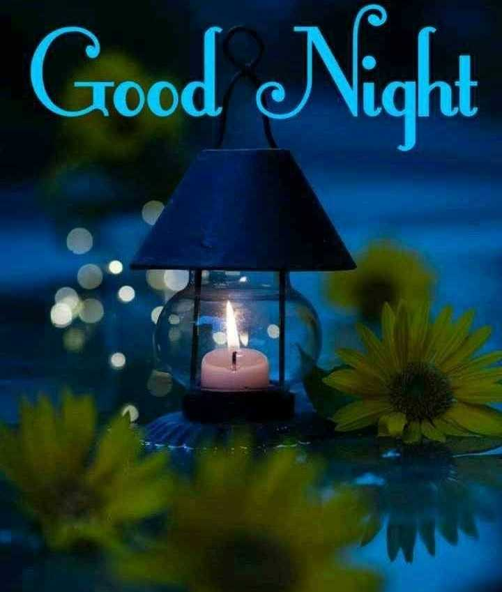 🌜 शुभ संध्या🙏 - Good Night - ShareChat