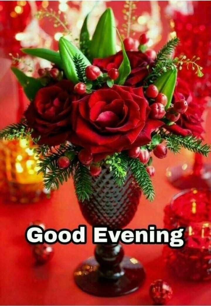 🌜 शुभ संध्या🙏 - Good Evening ! - ShareChat