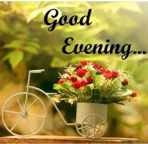 🌜शुभ संध्या - Good Evening . . - ShareChat
