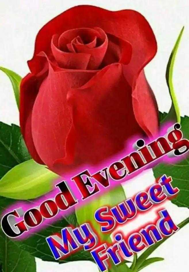 🌜शुभ संध्या - Good Evening My Sweet Friend - ShareChat