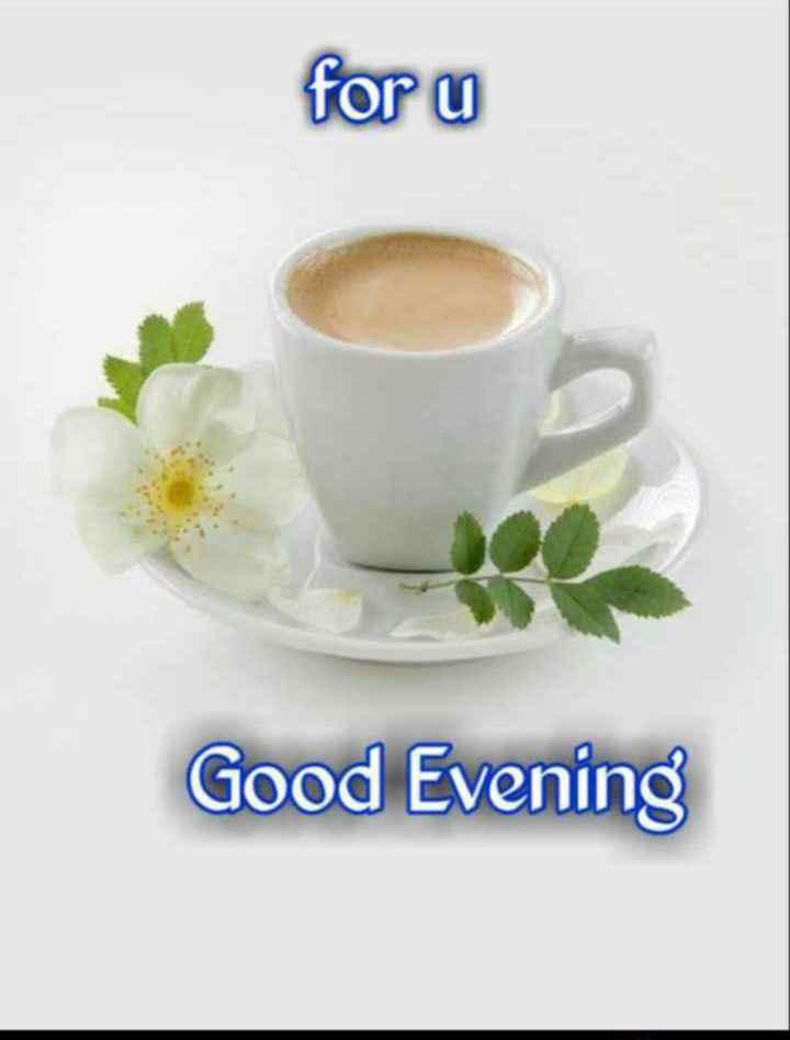 🌜 शुभ संध्या🙏 - for u Good Evening - ShareChat