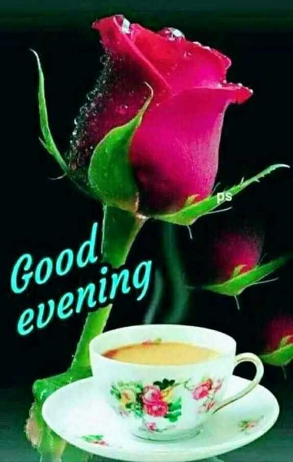 🌜शुभ संध्या - Good ! evening - ShareChat