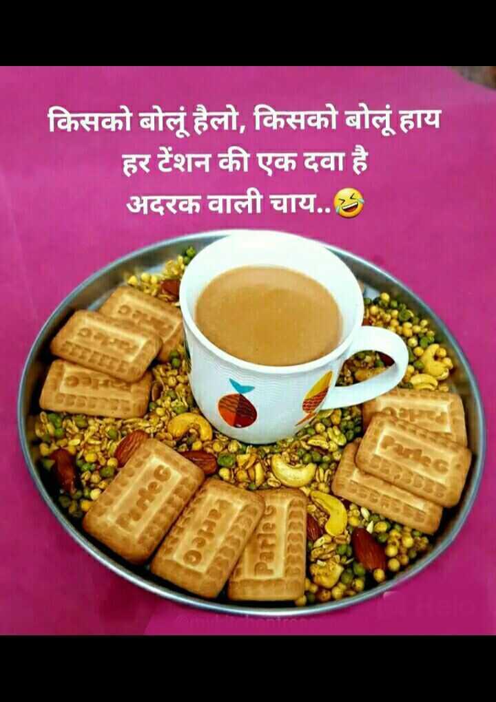🌜 शुभ संध्या🙏 - किसको बोलूं हैलो , किसको बोलूं हाय हर टेंशन की एक दवा है अदरक वाली चाय . . . - ShareChat