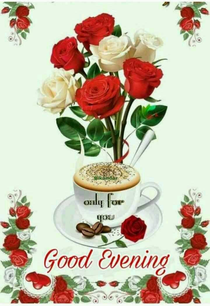 🌜शुभ संध्या - Sikander only for you Good Evening 0 . 06 - ShareChat