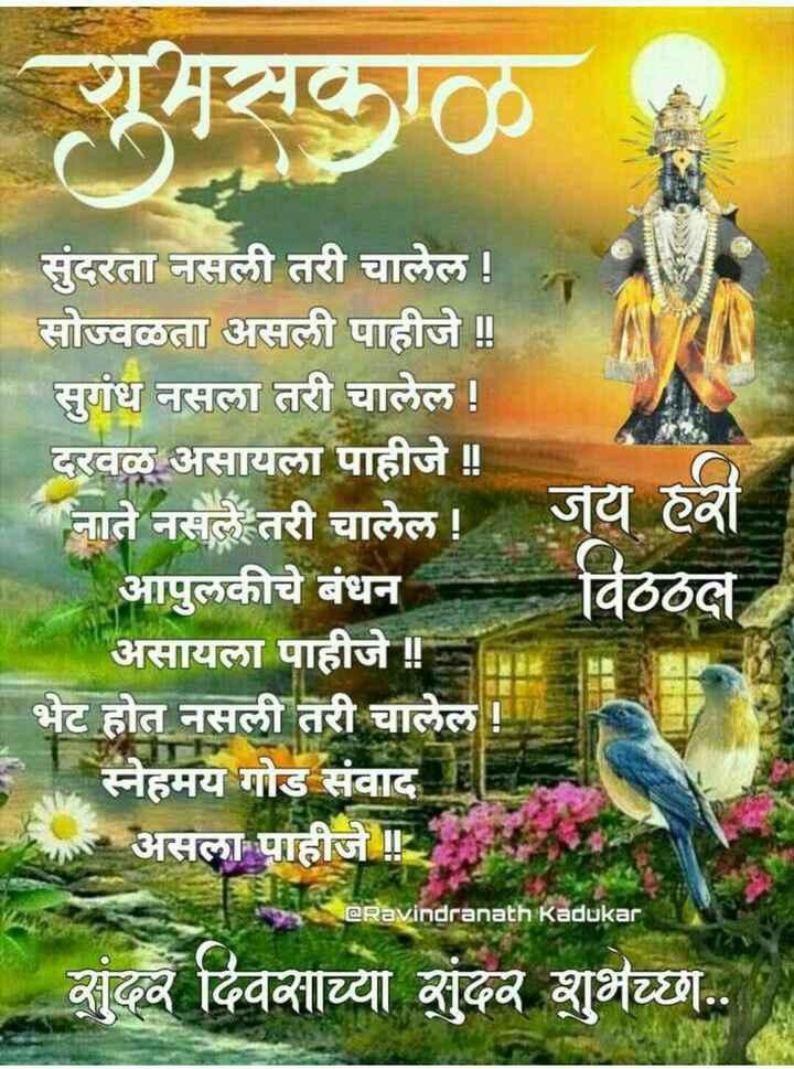 🌻🌻 शुभ सकाळ 🌻🌻 - | | सुंदरता नसली तरी चालेल ! सोज्वळता असली पाहीजे ॥ सुगंध नसला तरी चालेल ! दरवळ असायला पाहीजे ! आपुलकीचे बंधन असायला पाहीजे ! ! जय हे विठठले स्नेहमय गोड संवाद असला पाहीजे ! = @ Ravindranath Kadukar आंव दिवसाव्या शृंदव शुभेच्छा . . - ShareChat