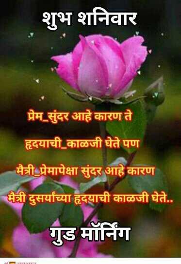🌻🌻 शुभ सकाळ 🌻🌻 - शुभ शनिवार प्रेम _ सुंदर आहे कारण ते हृदयाची काळजी घेते पण मैत्री _ प्रेमापेक्षा सुंदर आहे कारण मैत्री दुसर्याच्या हृदयाची काळजी घेते . . गुड मॉर्निग - ShareChat