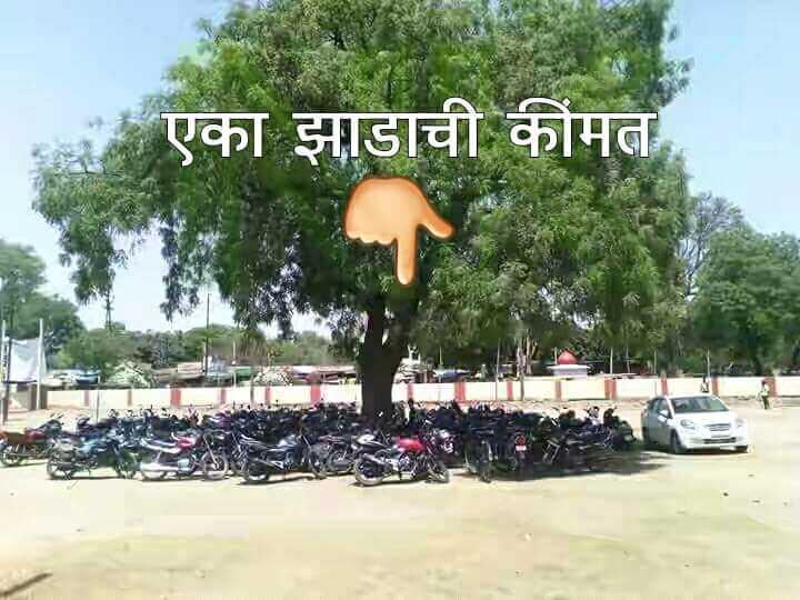 #शुभ सकाळ - और एका झाडाची कीमत A - ShareChat