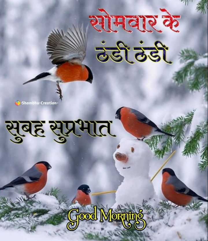 🌷शुभ सोमवार - सोमवार के ठंडी ठंडी - Shambhu - Creation सुबह सुप्रभात ood Morning - ShareChat