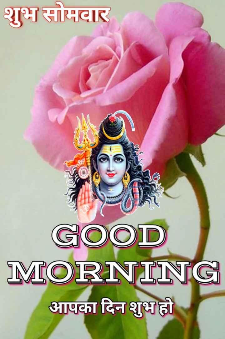 🌷शुभ सोमवार - शुभ सोमवार GOOD MORNING आपका दिन शुभ हो - ShareChat