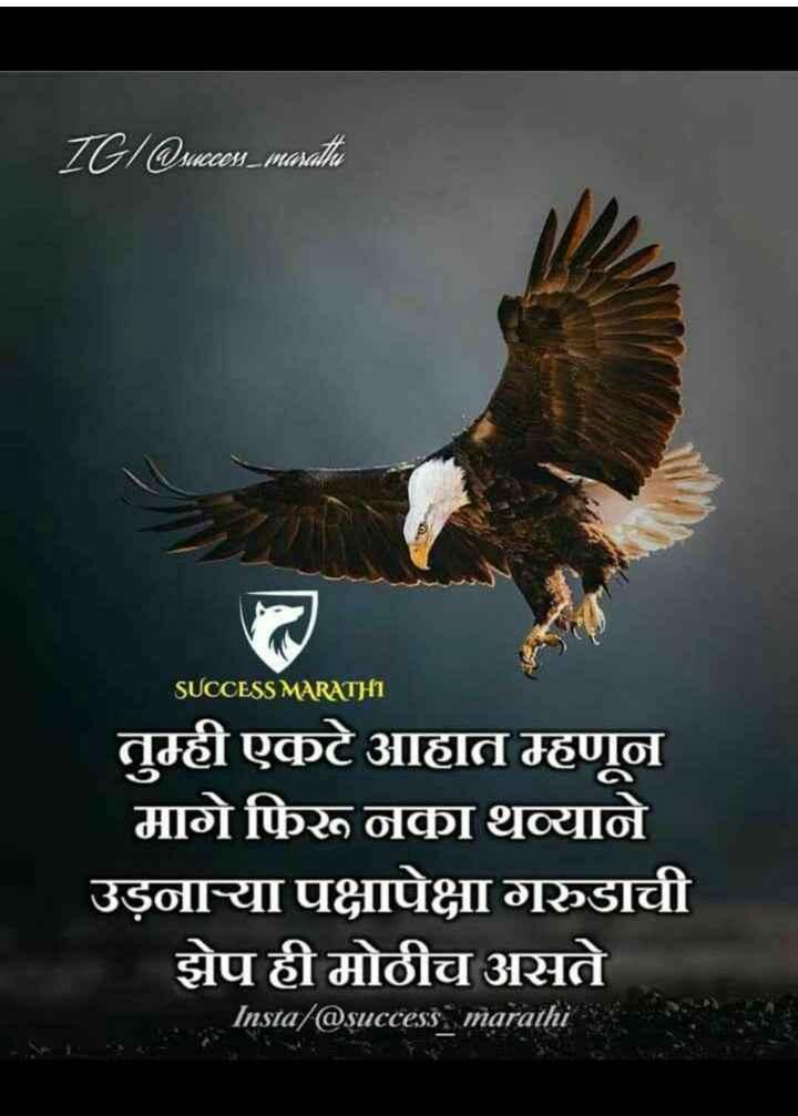 📲शेअरचॅट टिप्स - IGI @ succes _ mosati SUCCESS MARATHI तुम्ही एकटे आहात म्हणून मागे फिरू नका थव्याने उड़नाऱ्या पक्षापेक्षा गरुडाची झेप ही मोठीच असते Insta / @ success marathi - ShareChat
