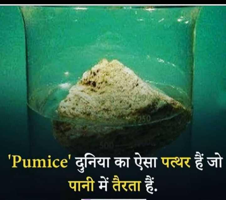 💡 शेयरचैट सामान्य ज्ञान - ' Pumice ' दुनिया का ऐसा पत्थर हैं जो पानी में तैरता हैं . - ShareChat
