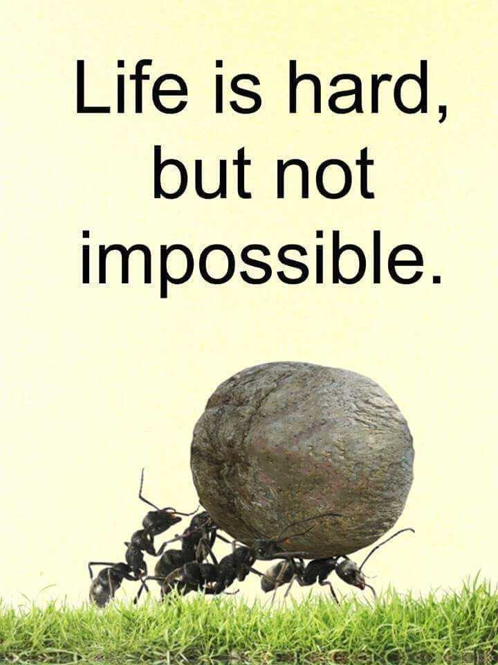 🖋 शेयरचैट Quotes - Life is hard , but not impossible . - ShareChat