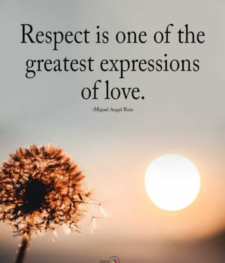 🖋 शेयरचैट Quotes - Respect is one of the greatest expressions of love . - Miguel Angel Ruiz - ShareChat