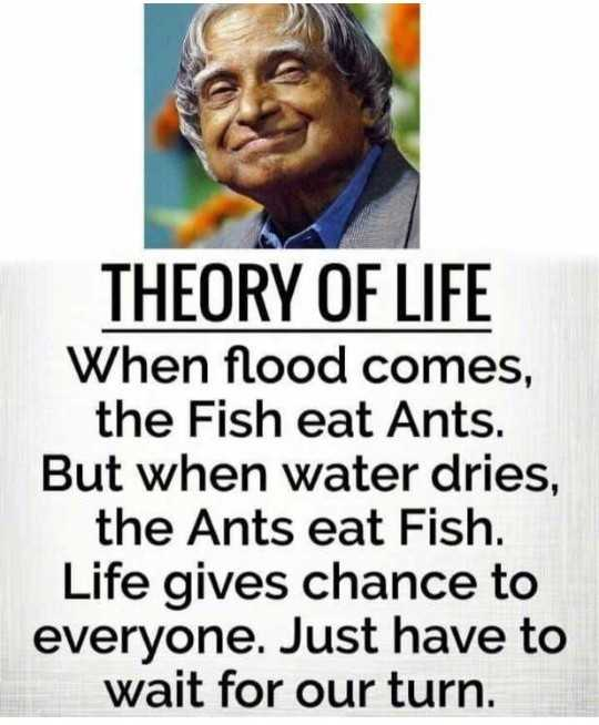 🖋 शेयरचैट Quotes - THEORY OF LIFE When flood comes , the Fish eat Ants . But when water dries , the Ants eat Fish . Life gives chance to everyone . Just have to wait for our turn . - ShareChat