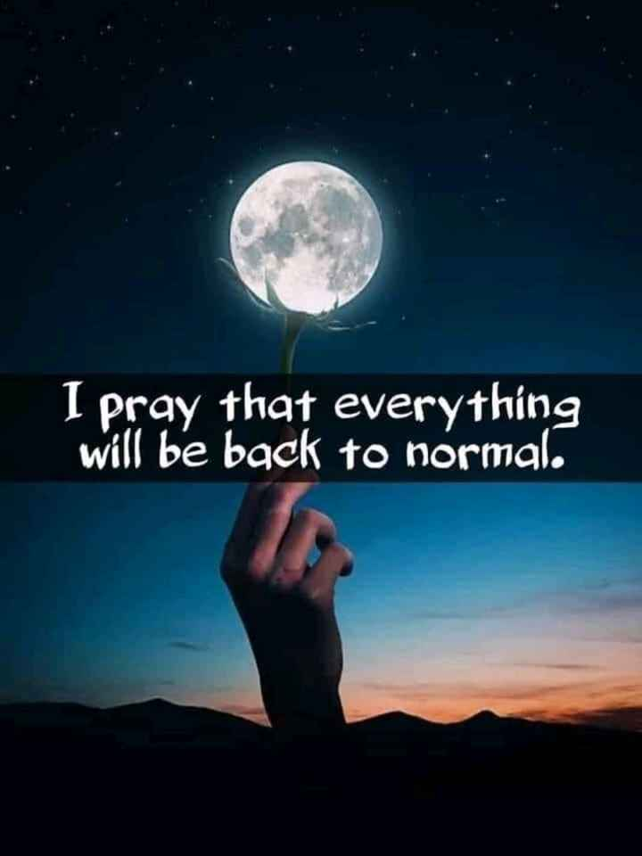 🖋 शेयरचैट Quotes - I pray that everything will be back to normal . - ShareChat