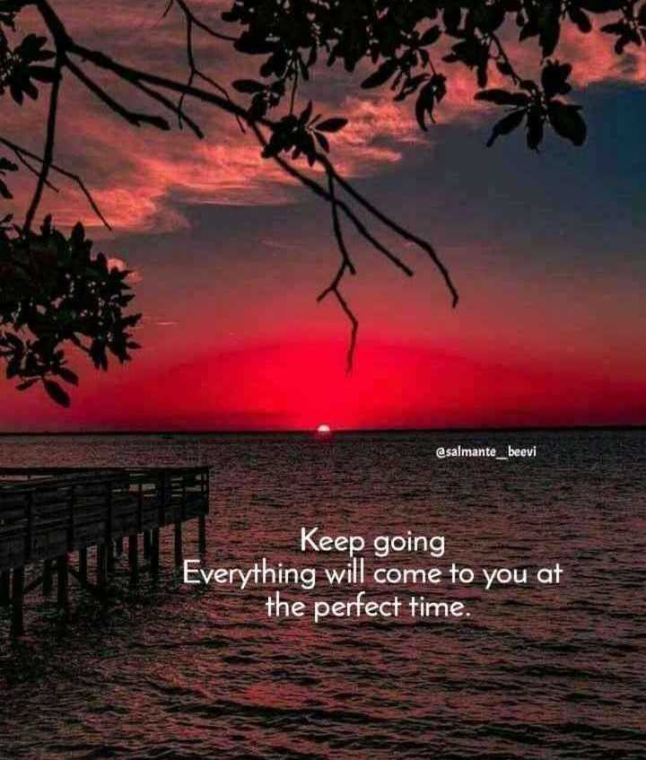 🖋 शेयरचैट Quotes - @ salmante _ beevi Keep going Everything will come to you at the perfect time . - ShareChat