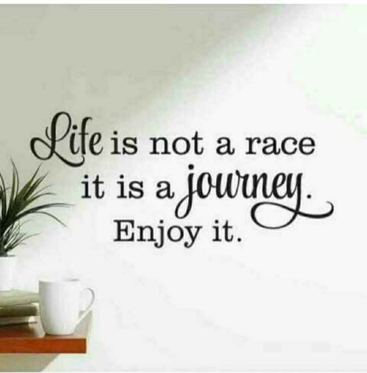 🖋 शेयरचैट Quotes - Life is not a race it is a journey Enjoy it . - ShareChat