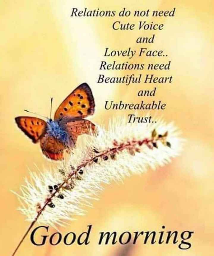 🖋 शेयरचैट Quotes - Relations do not need Cute Voice and Lovely Face . . Relations need Beautiful Heart and Unbreakable Trust . . Good morning - ShareChat