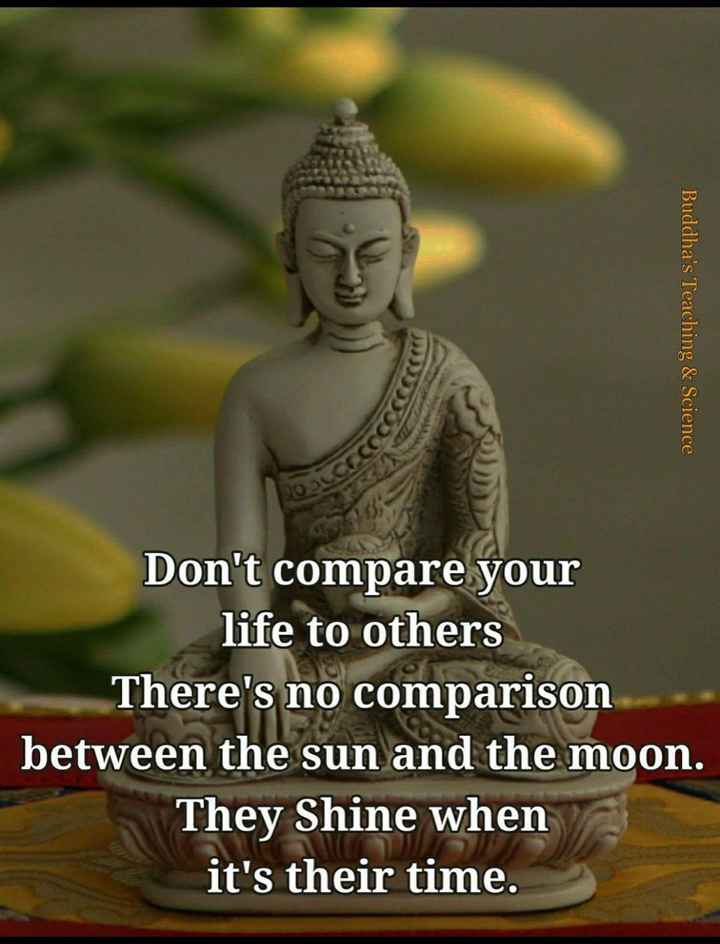 🖋 शेयरचैट Quotes - Buddha ' s Teaching & Science VO Don ' t compare your life to others There ' s no comparison between the sun and the moon . They Shine when it ' s their time . - ShareChat