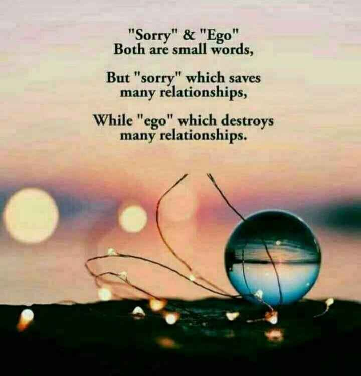 🖋 शेयरचैट Quotes - Sorry & Ego Both are small words , But sorry which saves many relationships , While ego which destroys many relationships . - ShareChat