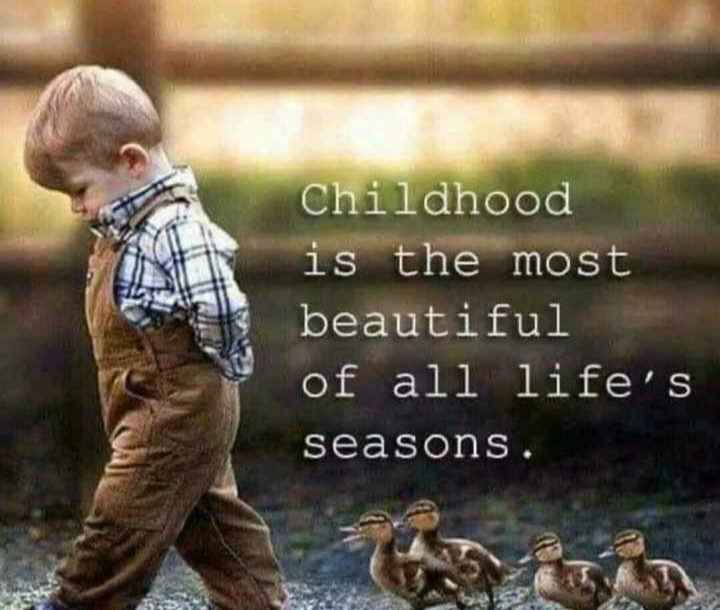 🖋 शेयरचैट Quotes - Childhood is the most beautiful of all life ' s seasons . - ShareChat