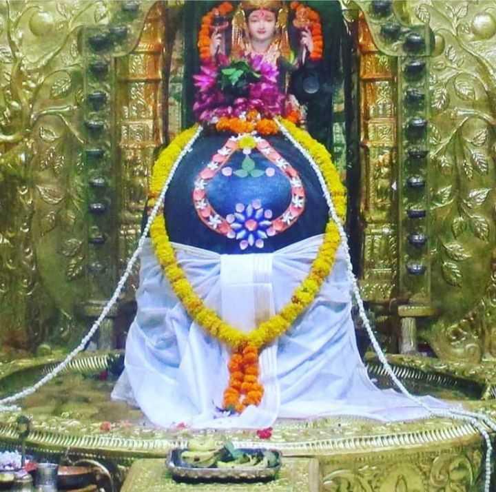🚩श्री सिद्धिविनायक मंदिर पूजा - החוקיתמהמהשווי הוגו מנגנונות - ShareChat