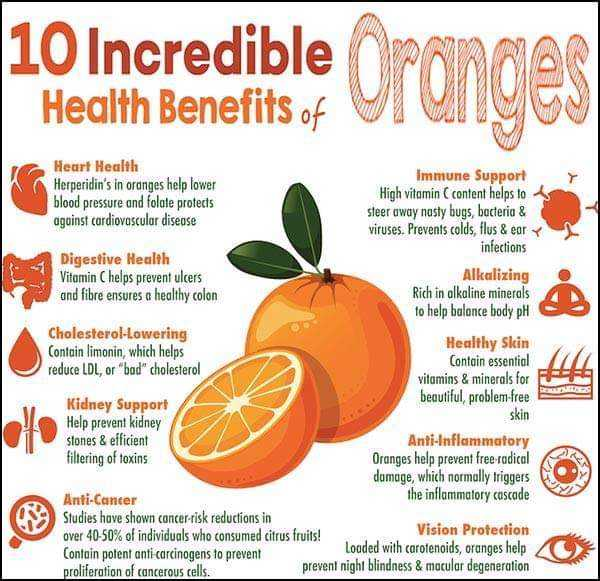 🍊संतरा खाओ ताजगी लाओ - 10 Incredible Health Benefits of Heart Health Immune Support Herperidin ' s in oranges help lower High vitamin content helps to blood pressure and folate protects against cardiovascular disease steer away nasty bugs , bacteria & viruses . Prevents colds , flus & eary infections Digestive Health Vitamin C helps prevent ulcers Alkalizing and fibre ensures a healthy colon Rich in alkaline minerals to help balance body pH Cholesterol - Lowering Healthy Skin Contain limonin , which helps Contain essential reduce LDL , or bad cholesterol vitamins & minerals for beautiful , problem - free Kidney Support Help prevent kidney skin stones & efficient Anti - Inflammatory filtering of toxins Oranges help prevent free - radical domage , which normally triggers Anti - Cancer the inflammatory cascade Studies have shown cancer - risk reductions in over 40 - 50 % of individuals who consumed citrus fruits ! Vision Protection Contain potent anti carcinogens to prevent Loaded with carotenoids , oranges help proliferation of cancerous cells . prevent night blindness & macular degeneration - ShareChat