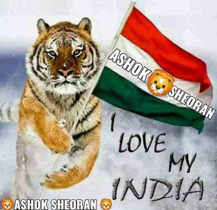 🙏 सम्मान सर्वोपरि - ASHOK : SHEORAN LOVE MY INDIA ASHOK SHEORAN - ShareChat