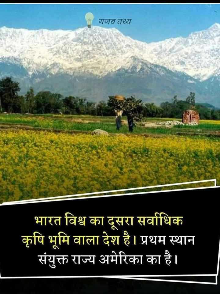🌱 सरसों दिवस - गजब तथ्य भारत विश्व का दूसरा सर्वाधिक कृषि भूमि वाला देश है । प्रथम स्थान संयुक्त राज्य अमेरिका का है । - ShareChat
