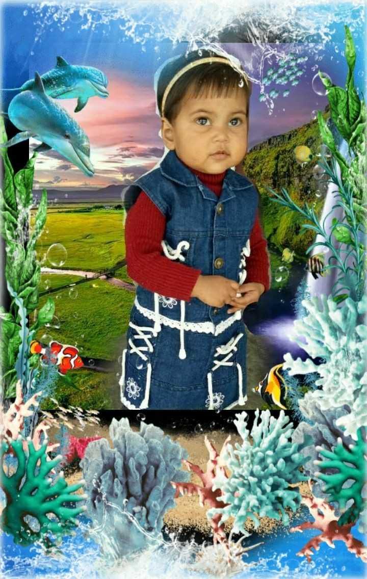 सलमान खान - ShareChat